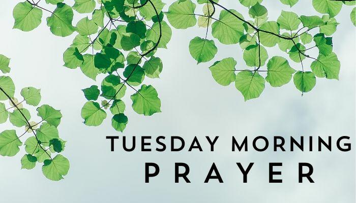 Tuesday Morning Prayer - Online